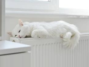4 вида радиаторов отопления на все случаи
